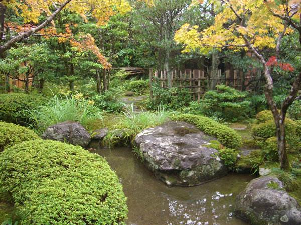 japanese garden design landscpae contractor sf bay area bio friendly gardens